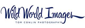 Wild World Images